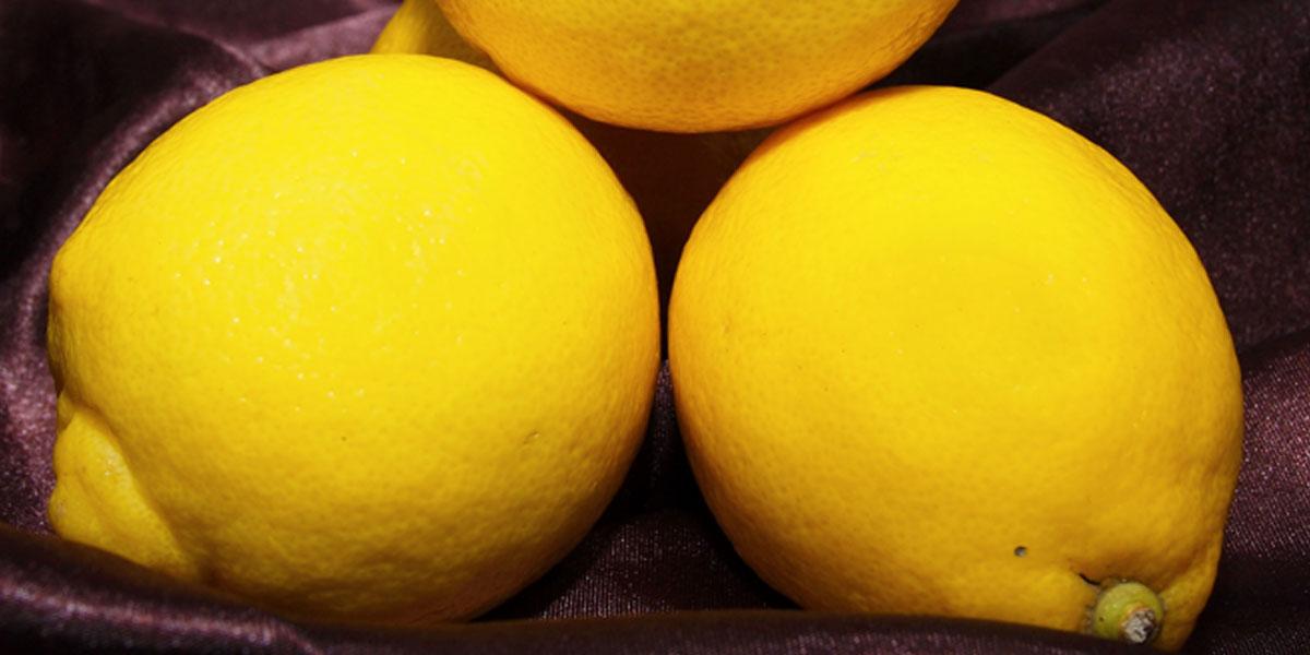 Als Garnitur verwenden Sie für den Lillet Vesper eine hauchdünne Zitronenscheibe oder eine Zitronenspirale.