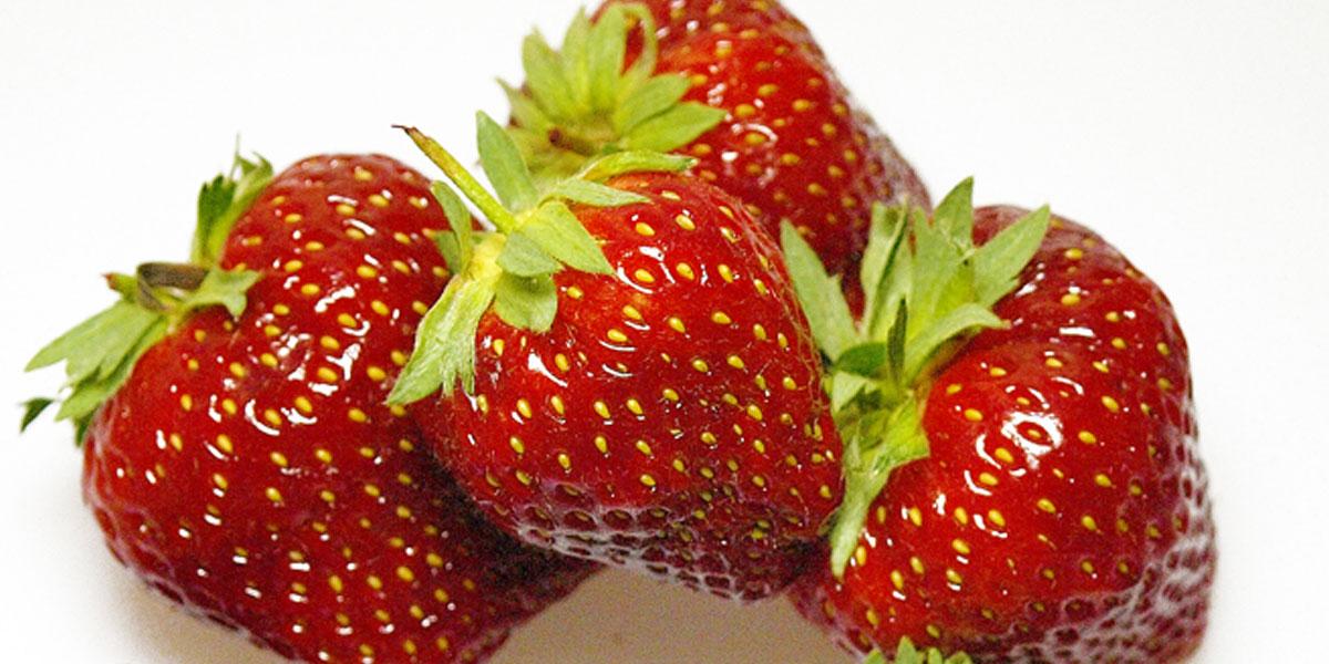 Lillet Berry:  geviertelte Erdbeeren sind als Garnitur sehr zu empfehlen.