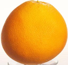 Raffinesse und Eleganz, durch wilde Orangen kombiniert mit edlen Cognacs, werden mit Hilfe eines Schluckes Grand Marnier hinzugefügt!