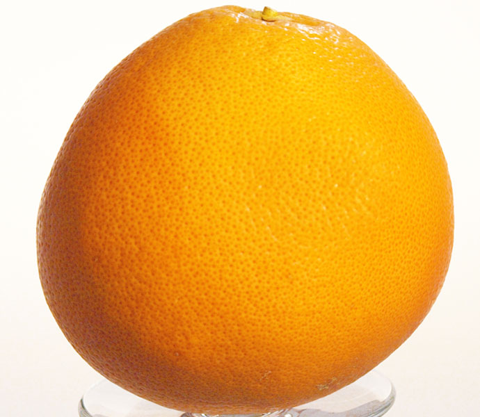 Als Garnitur empfehlen wir Orangenzeste in den Peytreuse zu geben.