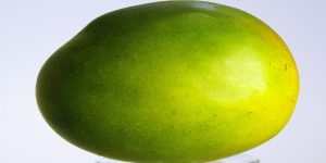 Die Pomelo gleicht in ihren allgemeinen Eigenschaften der Pampelmuse. Die Früchte sind meist etwas birnenförmig.